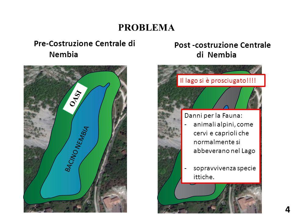 Pre-Costruzione Centrale di Nembia Post -costruzione Centrale di Nembia 4 PROBLEMA Il lago si è prosciugato!!!! Danni per la Fauna: -animali alpini, c