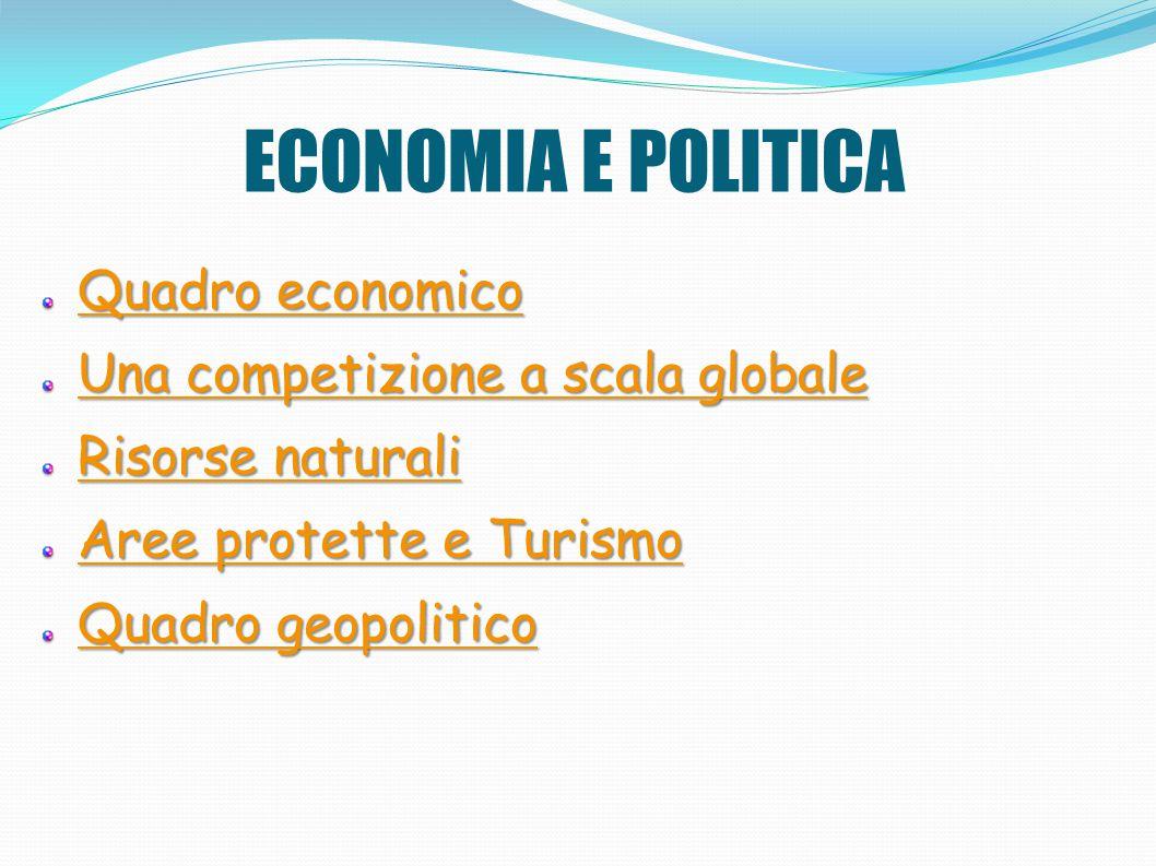 ECONOMIA E POLITICA Quadro economico Quadro economico Una competizione a scala globale Una competizione a scala globale Risorse naturali Risorse natur