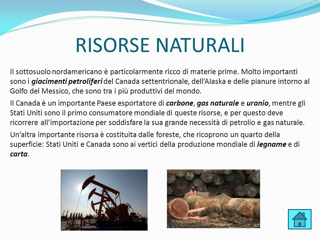 RISORSE NATURALI Il sottosuolo nordamericano è particolarmente ricco di materie prime. Molto importanti sono i giacimenti petroliferi del Canada sette