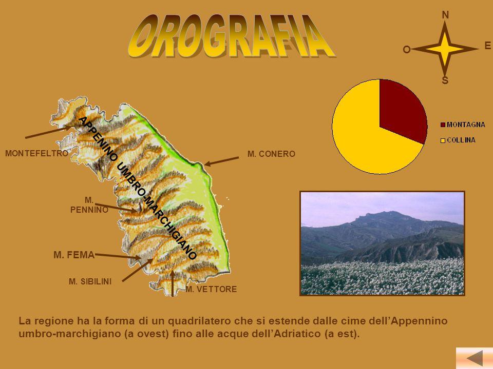 La regione ha la forma di un quadrilatero che si estende dalle cime dell'Appennino umbro-marchigiano (a ovest) fino alle acque dell'Adriatico (a est).
