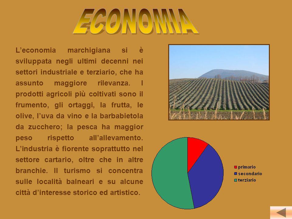 L'economia marchigiana si è sviluppata negli ultimi decenni nei settori industriale e terziario, che ha assunto maggiore rilevanza. I prodotti agricol