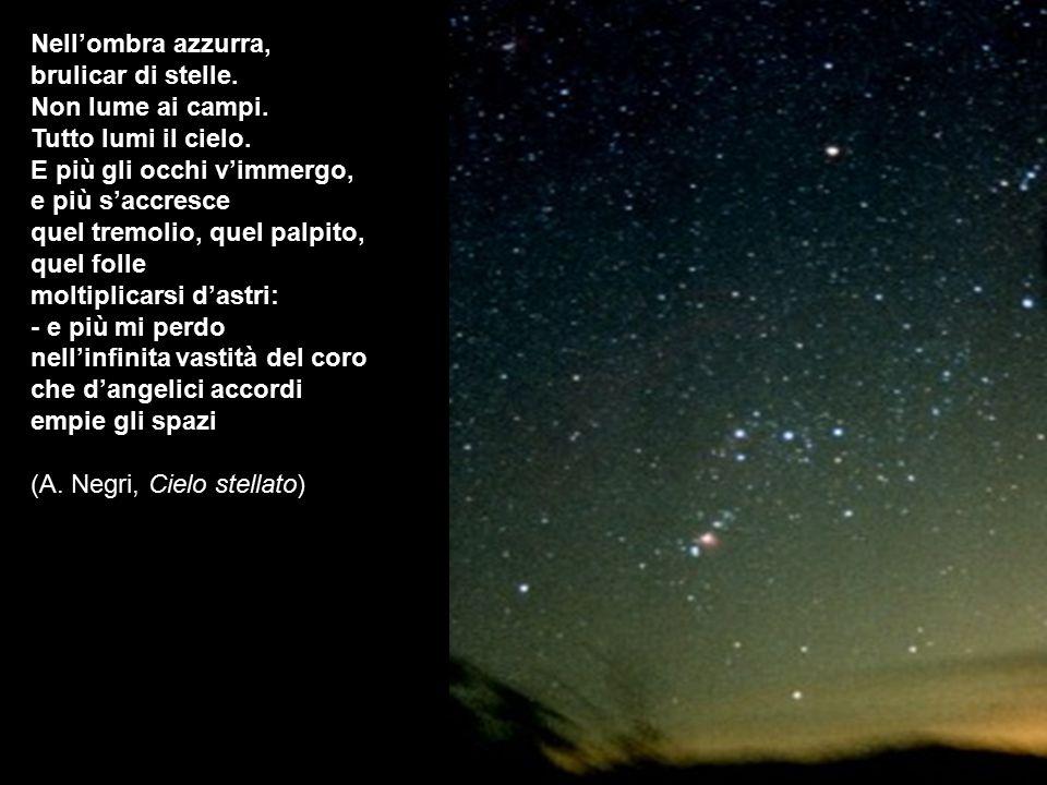 Nell'ombra azzurra, brulicar di stelle. Non lume ai campi. Tutto lumi il cielo. E più gli occhi v'immergo, e più s'accresce quel tremolio, quel palpit