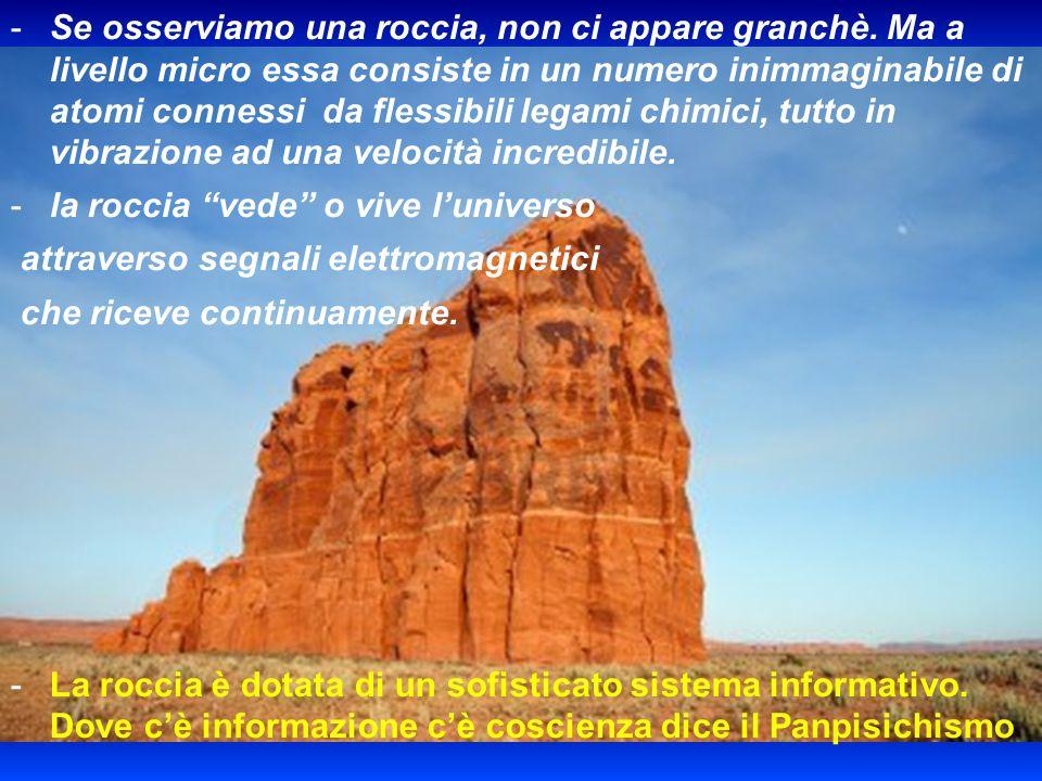 -I-Il panpsichismo deriva dalla filosofia rinascimentale e neoplatonica secondo la quale il cosmo è animato da un principio intelligente, veicolato in