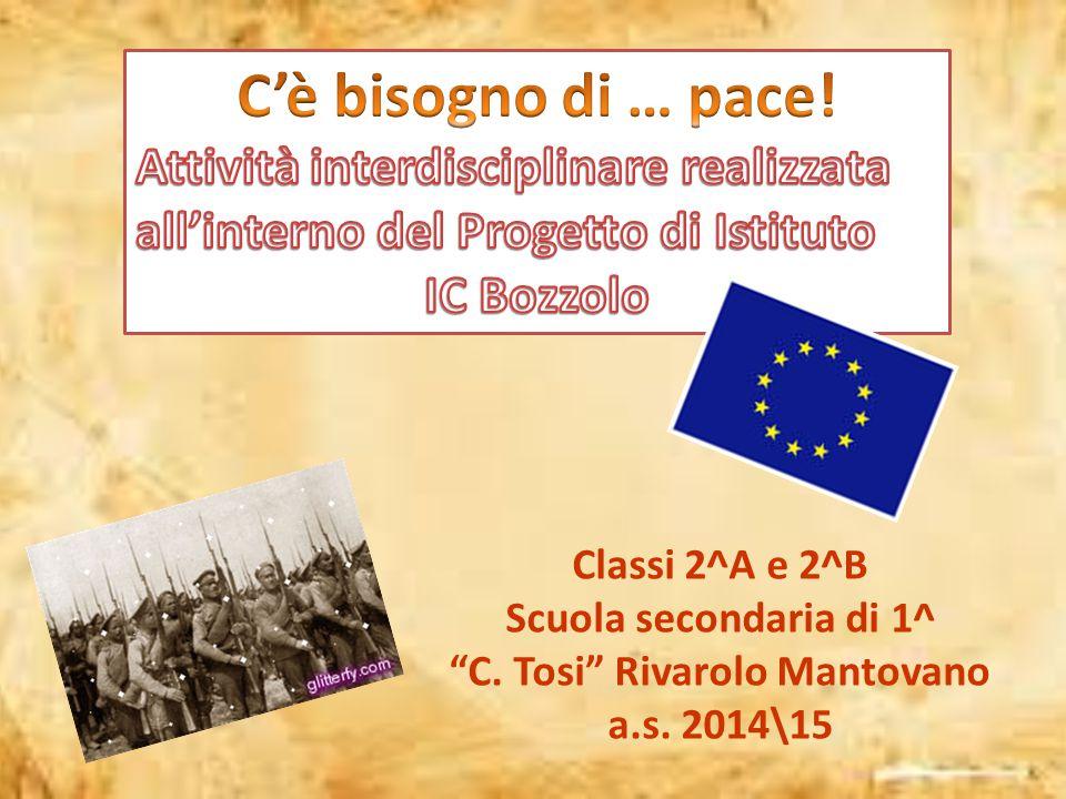 """Classi 2^A e 2^B Scuola secondaria di 1^ """"C. Tosi"""" Rivarolo Mantovano a.s. 2014\15"""