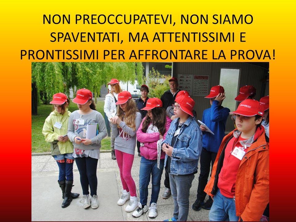 NON PREOCCUPATEVI, NON SIAMO SPAVENTATI, MA ATTENTISSIMI E PRONTISSIMI PER AFFRONTARE LA PROVA!