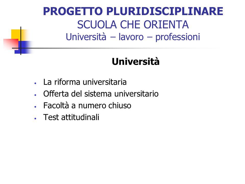 PROGETTO PLURIDISCIPLINARE SCUOLA CHE ORIENTA Università – lavoro – professioni Università La riforma universitaria Offerta del sistema universitario
