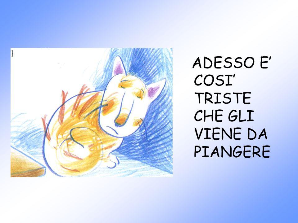 ADESSO E' COSI' TRISTE CHE GLI VIENE DA PIANGERE