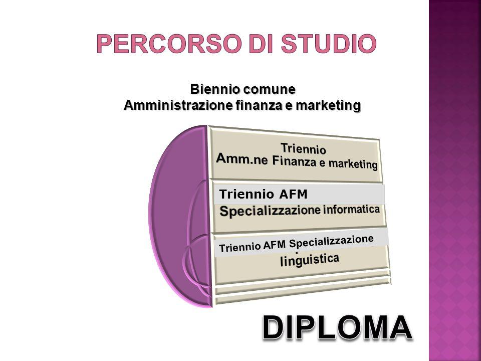 Biennio comune Amministrazione finanza e marketing Triennio AFM Triennio AFM Specializzazione Triennio AFM Triennio AFM Specializzazione