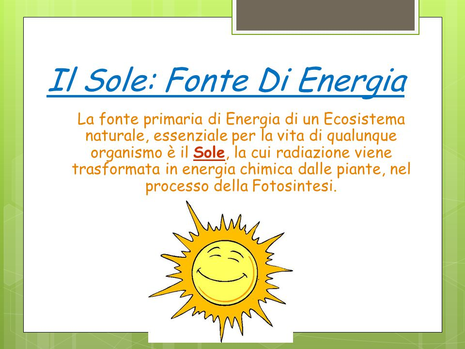 Il Sole: Fonte Di Energia La fonte primaria di Energia di un Ecosistema naturale, essenziale per la vita di qualunque organismo è il Sole, la cui radi