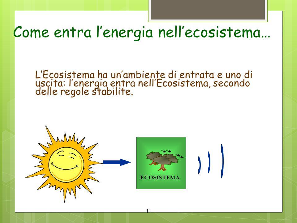 Come entra l'energia nell'ecosistema… L'Ecosistema ha un'ambiente di entrata e uno di uscita: l'energia entra nell'Ecosistema, secondo delle regole st