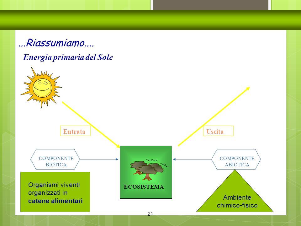 21 Energia primaria del Sole...Riassumiamo.... Entrata ECOSISTEMA COMPONENTE BIOTICA COMPONENTE ABIOTICA Ambiente chimico-fisico Organismi viventi org
