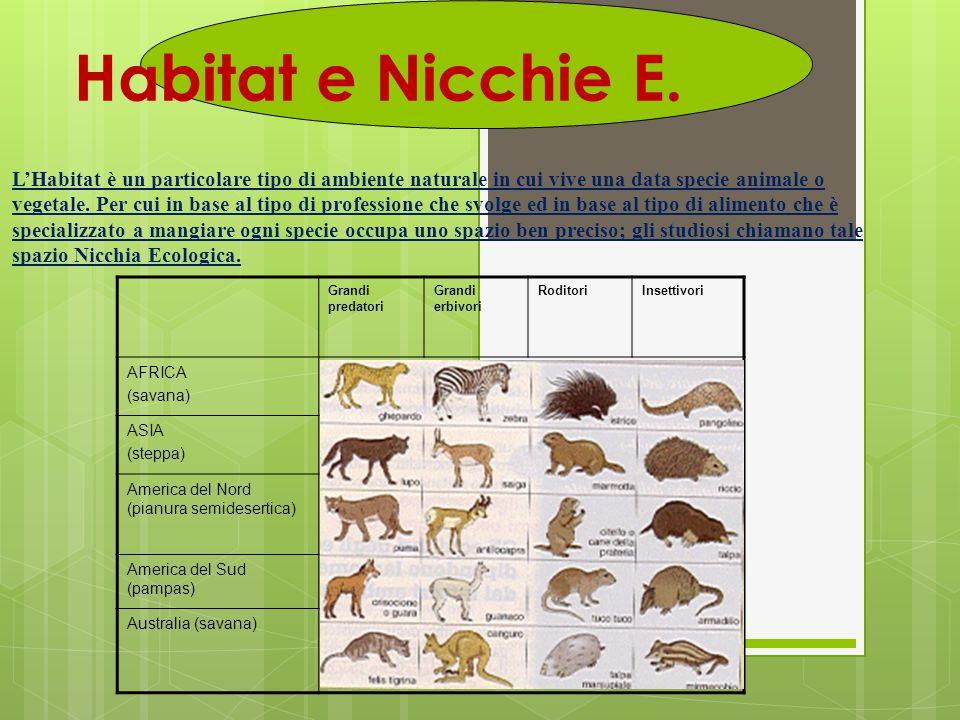 Habitat e Nicchie E. L'Habitat è un particolare tipo di ambiente naturale in cui vive una data specie animale o vegetale. Per cui in base al tipo di p