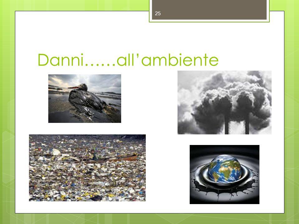 Danni……all'ambiente 25
