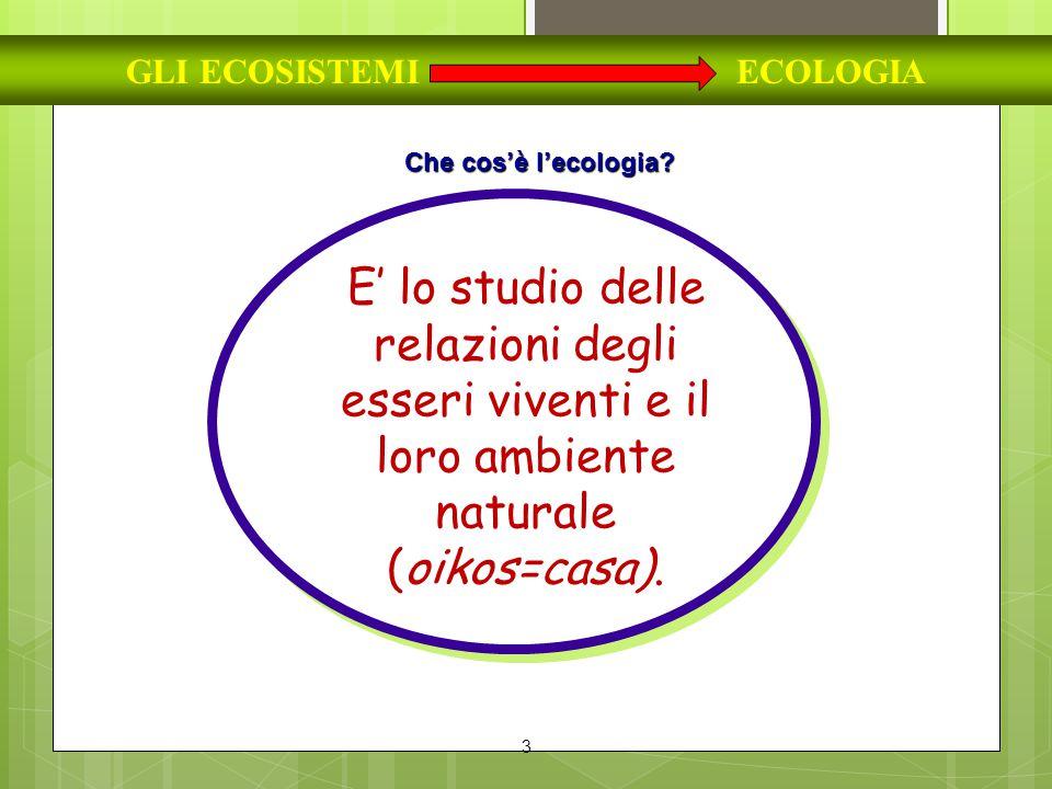 3 GLI ECOSISTEMI ECOLOGIA Che cos'è l'ecologia? E' lo studio delle relazioni degli esseri viventi e il loro ambiente naturale (oikos=casa).