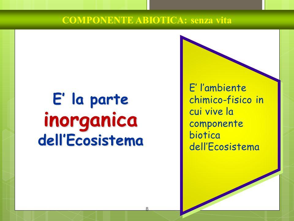 8 COMPONENTE ABIOTICA: senza vita E' la parte inorganica dell'Ecosistema E' l'ambiente chimico-fisico in cui vive la componente biotica dell'Ecosistem