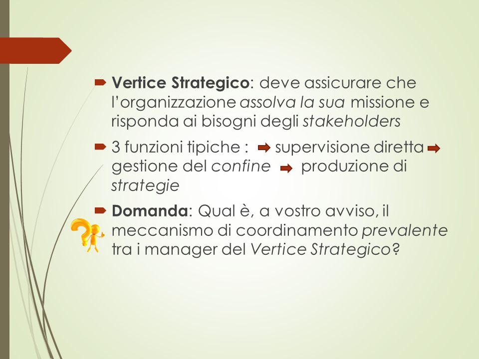  Vertice Strategico : deve assicurare che l'organizzazione assolva la sua missione e risponda ai bisogni degli stakeholders  3 funzioni tipiche : su