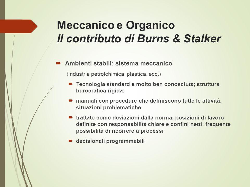 Meccanico e Organico Il contributo di Burns & Stalker  Ambienti stabili: sistema meccanico (industria petrolchimica, plastica, ecc.)  Tecnologia sta