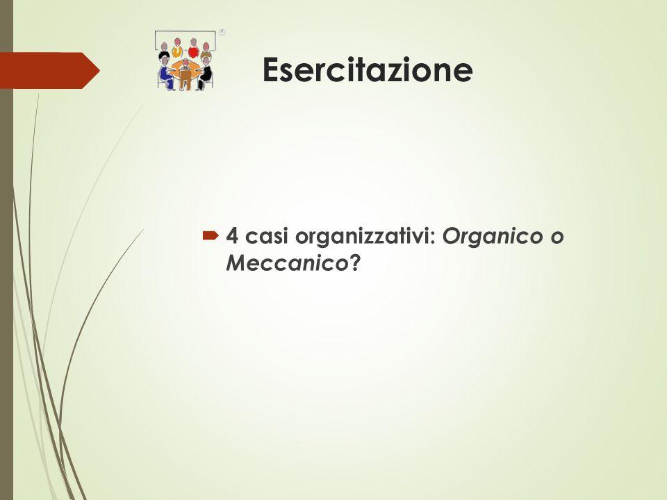 Esercitazione  4 casi organizzativi: Organico o Meccanico ?