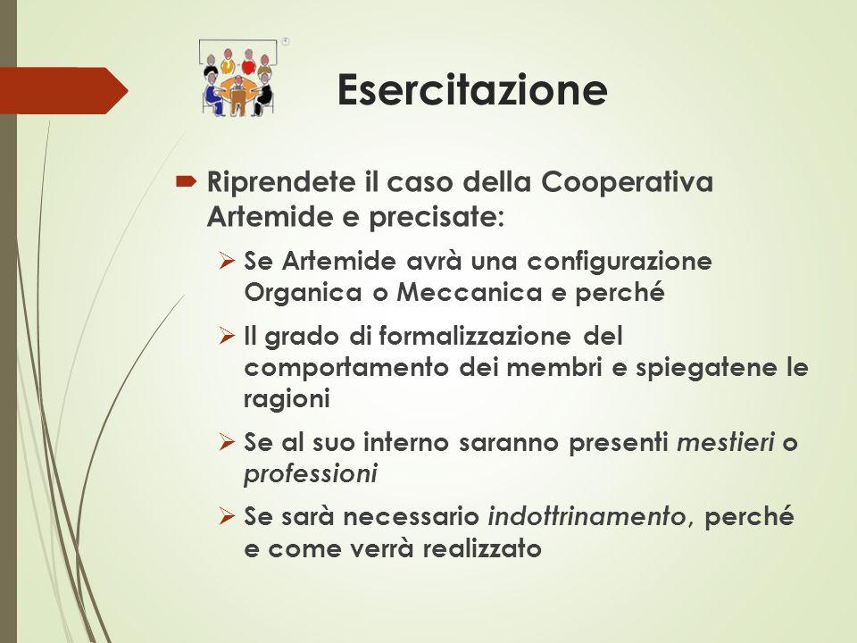 Esercitazione  Riprendete il caso della Cooperativa Artemide e precisate:  Se Artemide avrà una configurazione Organica o Meccanica e perché  Il gr