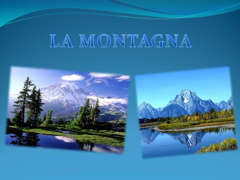 L'unità di apprendimento sulla montagna è stata realizzata da: Andrea Barca Giuseppe Florio Antonio Prosperati Katia Randò Jessica Sciammarella