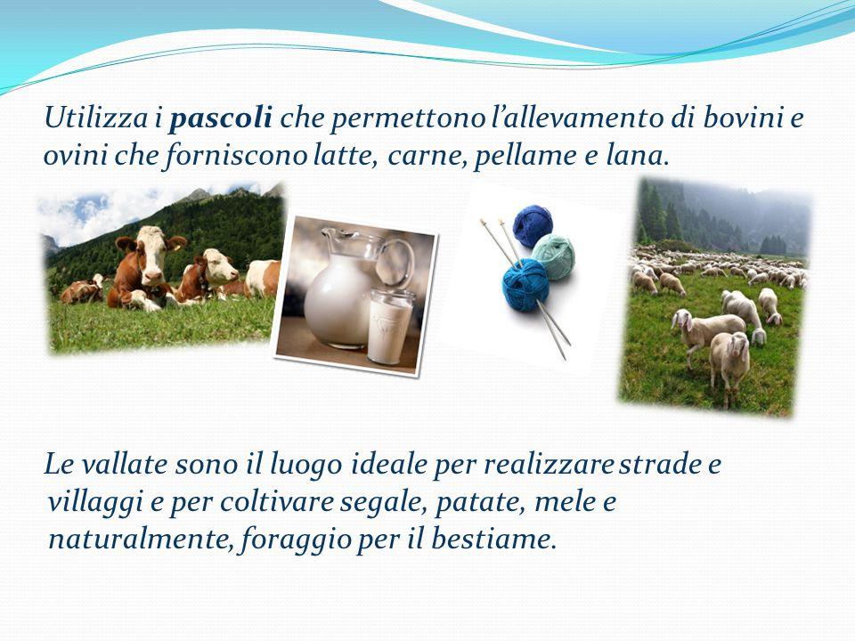 Utilizza i pascoli che permettono l'allevamento di bovini e ovini che forniscono latte, carne, pellame e lana. Le vallate sono il luogo ideale per rea