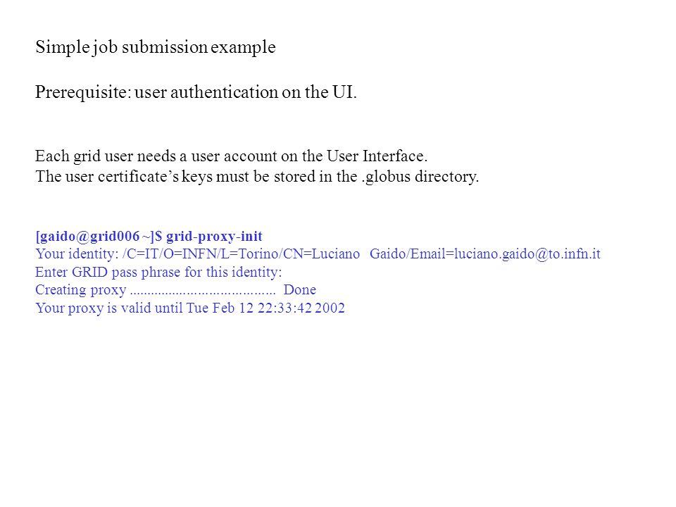 Simple job submission example Prerequisite: user authentication on the UI.