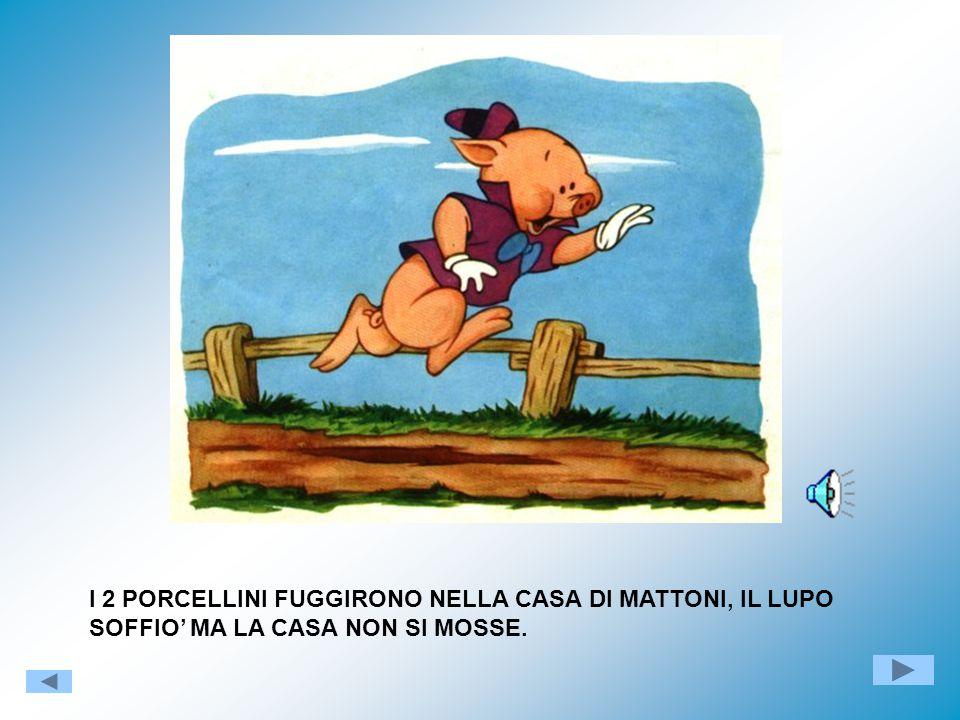 I 2 PORCELLINI FUGGIRONO NELLA CASA DI MATTONI, IL LUPO SOFFIO' MA LA CASA NON SI MOSSE.