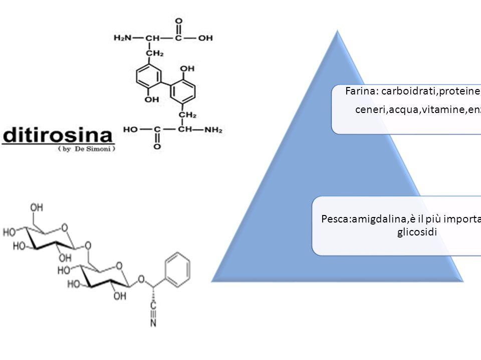 Farina: carboidrati,proteine,grassi ceneri,acqua,vitamine,enzimi Pesca:amigdalina,è il più importanti dei glicosidi