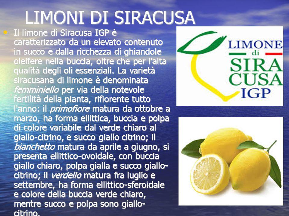 LIMONI DI SIRACUSA Il limone di Siracusa IGP è caratterizzato da un elevato contenuto in succo e dalla ricchezza di ghiandole oleifere nella buccia, oltre che per l alta qualità degli oli essenziali.