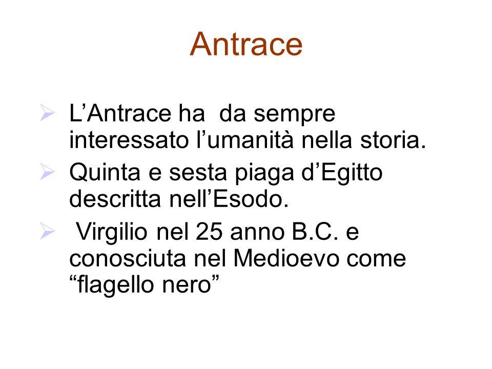 Antrace  L'Antrace ha da sempre interessato l'umanità nella storia.