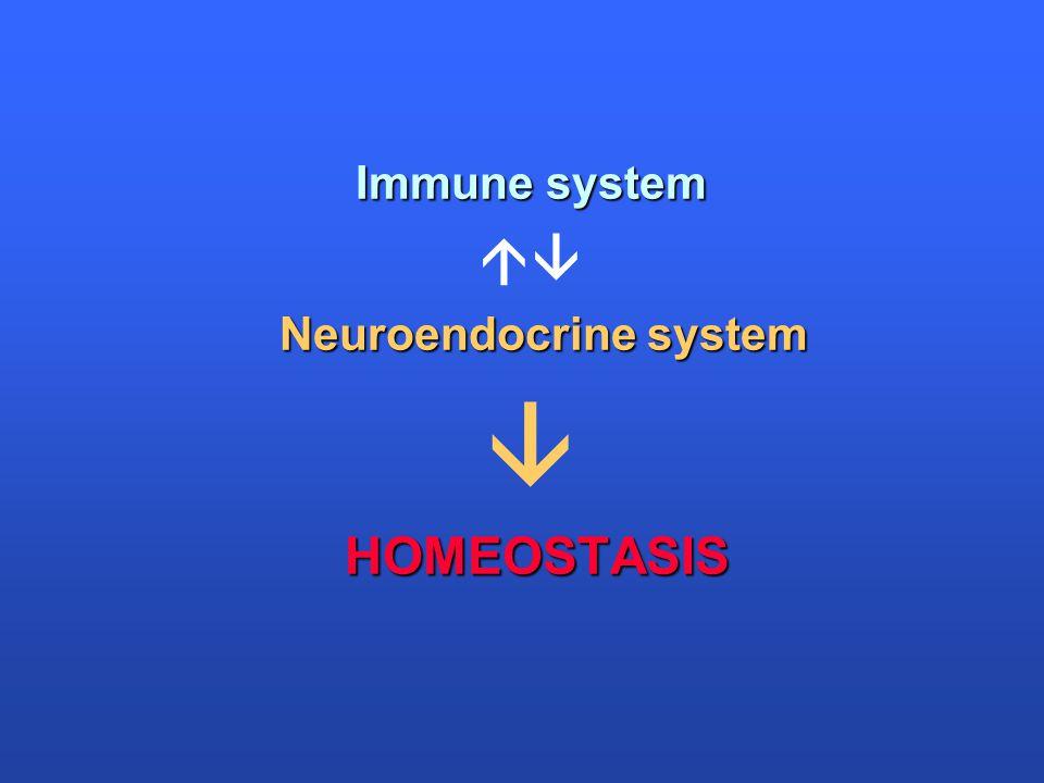 Immune system  Neuroendocrine system  HOMEOSTASIS