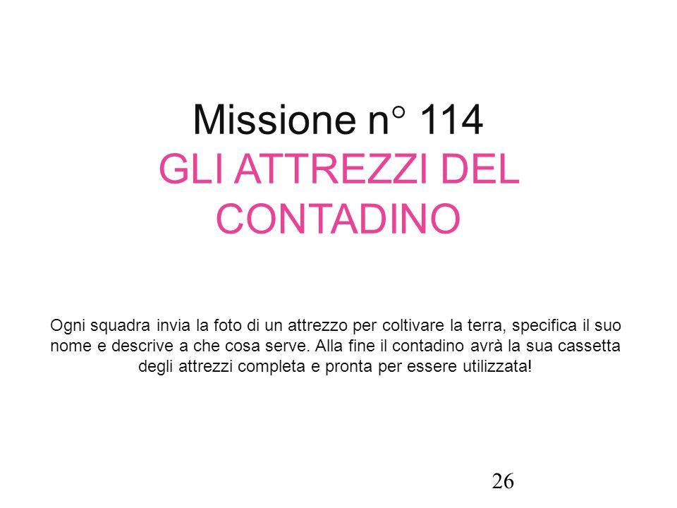 Missione n° 114 GLI ATTREZZI DEL CONTADINO Ogni squadra invia la foto di un attrezzo per coltivare la terra, specifica il suo nome e descrive a che co