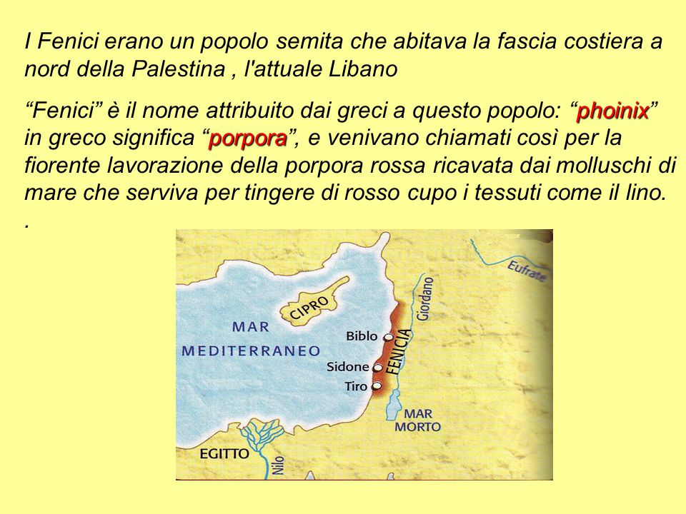 """I Fenici erano un popolo semita che abitava la fascia costiera a nord della Palestina, l'attuale Libano phoinix porpora """"Fenici"""" è il nome attribuito"""
