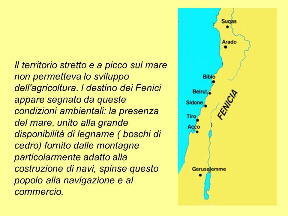 Lungo le coste sorsero importanti città stato come BIBLO, SIDONE e TIRO.
