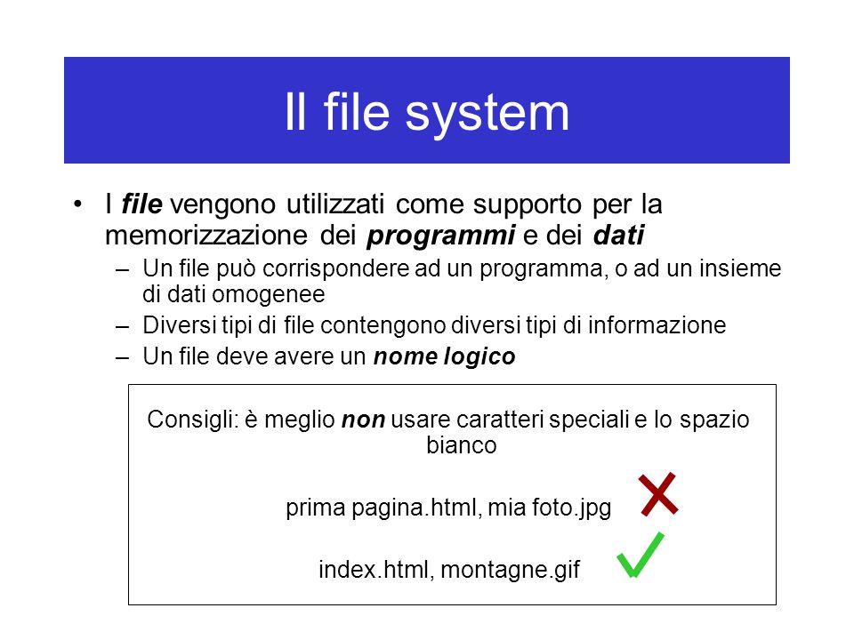 Il file system I file vengono utilizzati come supporto per la memorizzazione dei programmi e dei dati –Un file può corrispondere ad un programma, o ad un insieme di dati omogenee –Diversi tipi di file contengono diversi tipi di informazione –Un file deve avere un nome logico Consigli: è meglio non usare caratteri speciali e lo spazio bianco prima pagina.html, mia foto.jpg index.html, montagne.gif