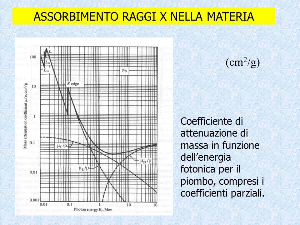 ASSORBIMENTO RAGGI X NELLA MATERIA Coefficiente di attenuazione di massa in funzione dell'energia fotonica per il piombo, compresi i coefficienti parz