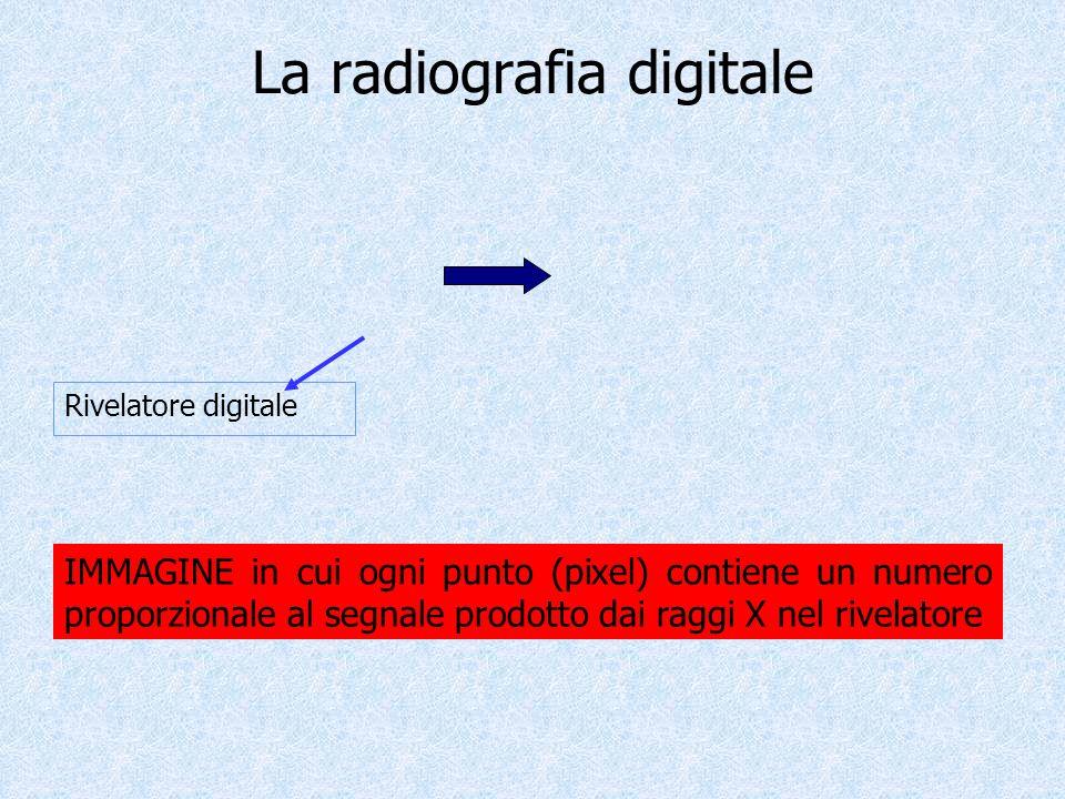 La radiografia digitale Rivelatore digitale IMMAGINE in cui ogni punto (pixel) contiene un numero proporzionale al segnale prodotto dai raggi X nel ri
