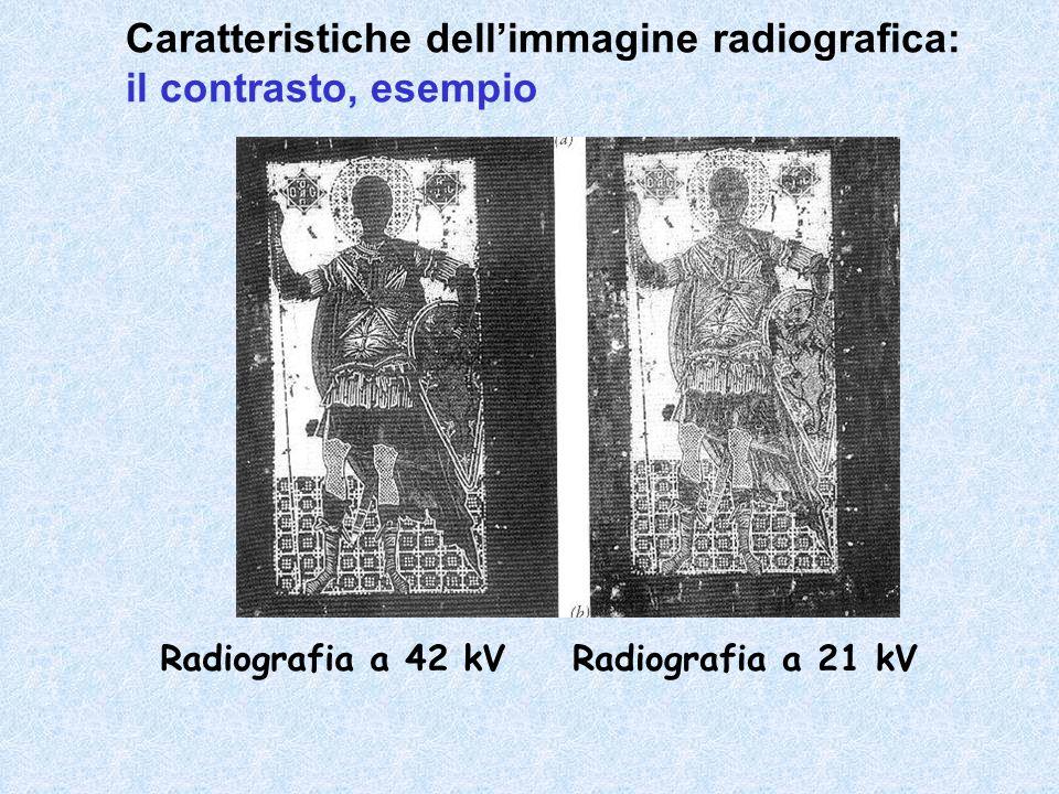 Radiografia a 42 kVRadiografia a 21 kV Caratteristiche dell'immagine radiografica: il contrasto, esempio