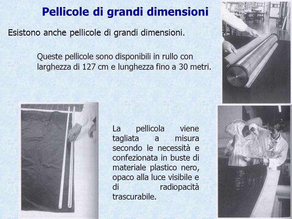 Queste pellicole sono disponibili in rullo con larghezza di 127 cm e lunghezza fino a 30 metri. La pellicola viene tagliata a misura secondo le necess