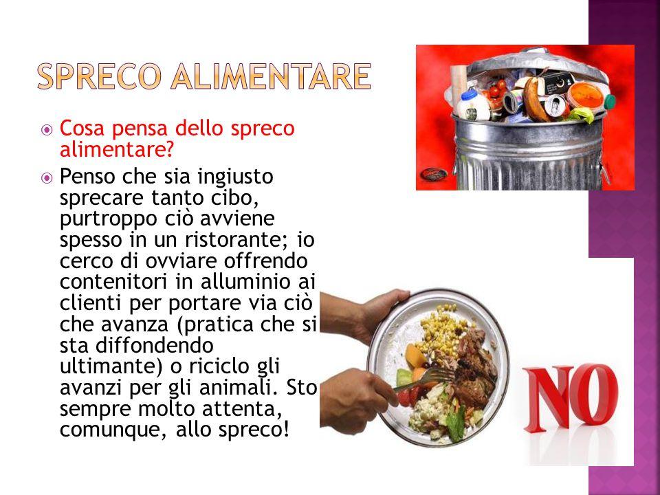  Cosa pensa dello spreco alimentare?  Penso che sia ingiusto sprecare tanto cibo, purtroppo ciò avviene spesso in un ristorante; io cerco di ovviare