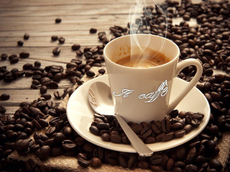 LA STORIA Fino al XIX secolo non era certo quale fosse il luogo di origine della pianta del caffè e, oltre all Etiopia, si ipotizzava la Persia e lo Yemen.
