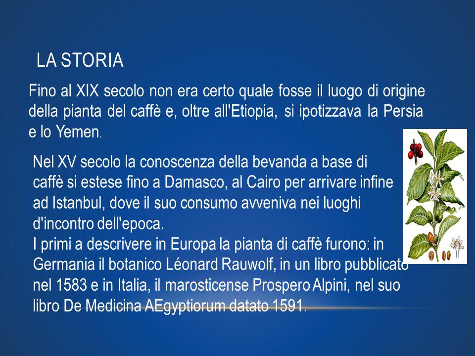 Per i suoi rapporti commerciali in Vicino Oriente, Venezia fu la prima a far uso del caffè in Italia, forse fin dal XVI secolo; ma le prime botteghe del caffè furono aperte solo nel 1645 Verso il 1650, cominciò ad essere importato e consumato in Inghilterra e si aprirono di conseguenza i primi caffè come ad esempio quelli di Oxford e Londra Nel Settecento ogni città d Europa possedeva almeno un caffè.