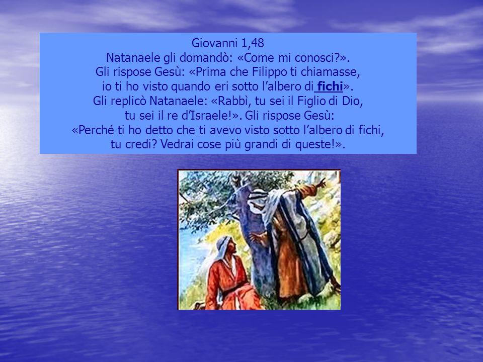 Giovanni 1,48 Natanaele gli domandò: «Come mi conosci?». Gli rispose Gesù: «Prima che Filippo ti chiamasse, io ti ho visto quando eri sotto l'albero d