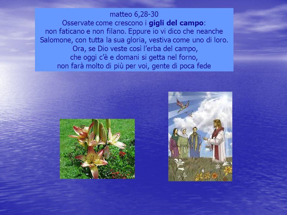 matteo7,7-11 Chiedete e vi sarà dato, cercate e troverete, bussate e vi sarà aperto.