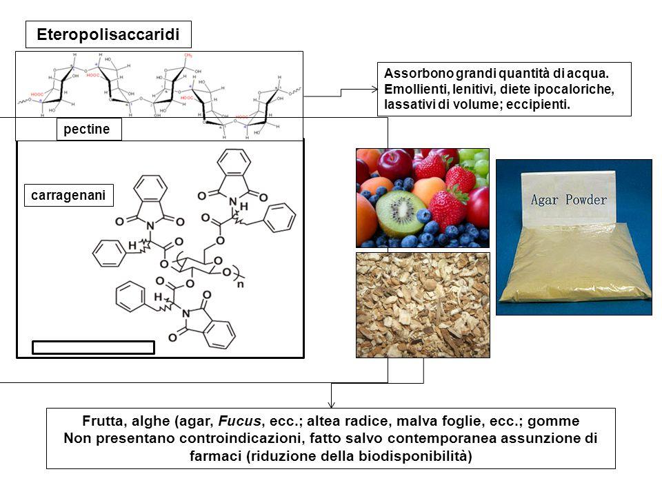 carragenani pectine Eteropolisaccaridi Assorbono grandi quantità di acqua. Emollienti, lenitivi, diete ipocaloriche, lassativi di volume; eccipienti.