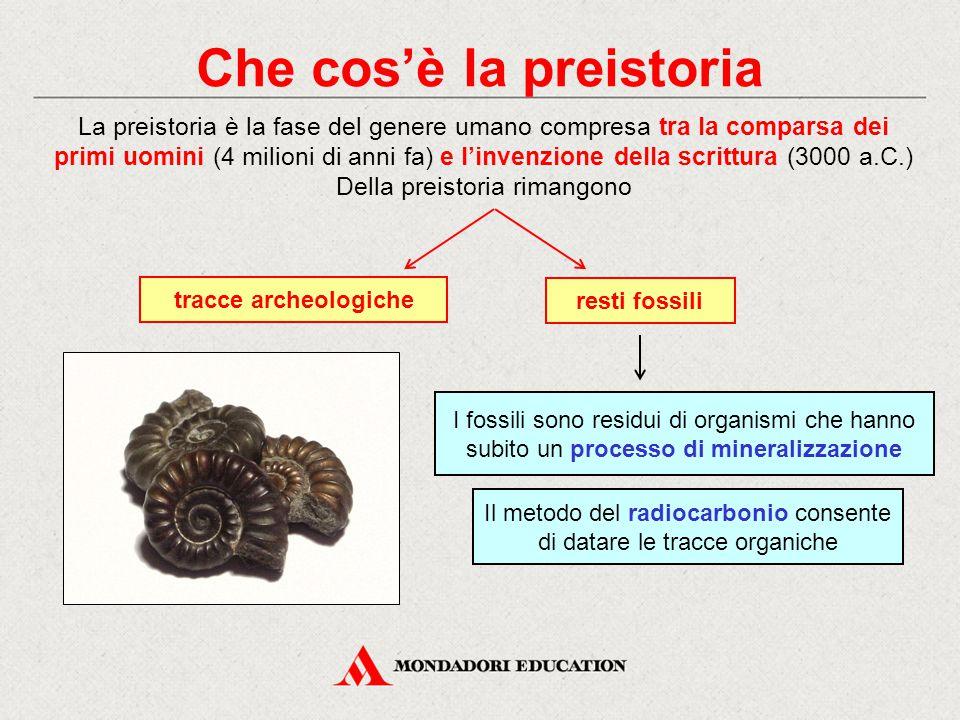 Che cos'è la preistoria resti fossili La preistoria è la fase del genere umano compresa tra la comparsa dei primi uomini (4 milioni di anni fa) e l'in