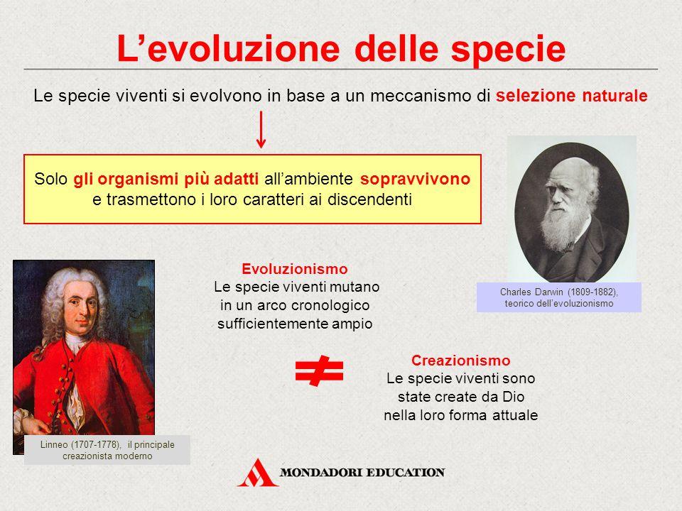 L'evoluzione delle specie Le specie viventi si evolvono in base a un meccanismo di selezione n aturale Solo gli organismi più adatti all'ambiente sopr