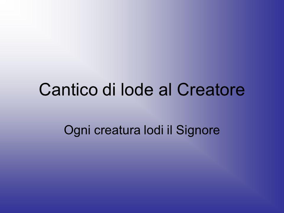 Cantico di lode al Creatore Ogni creatura lodi il Signore