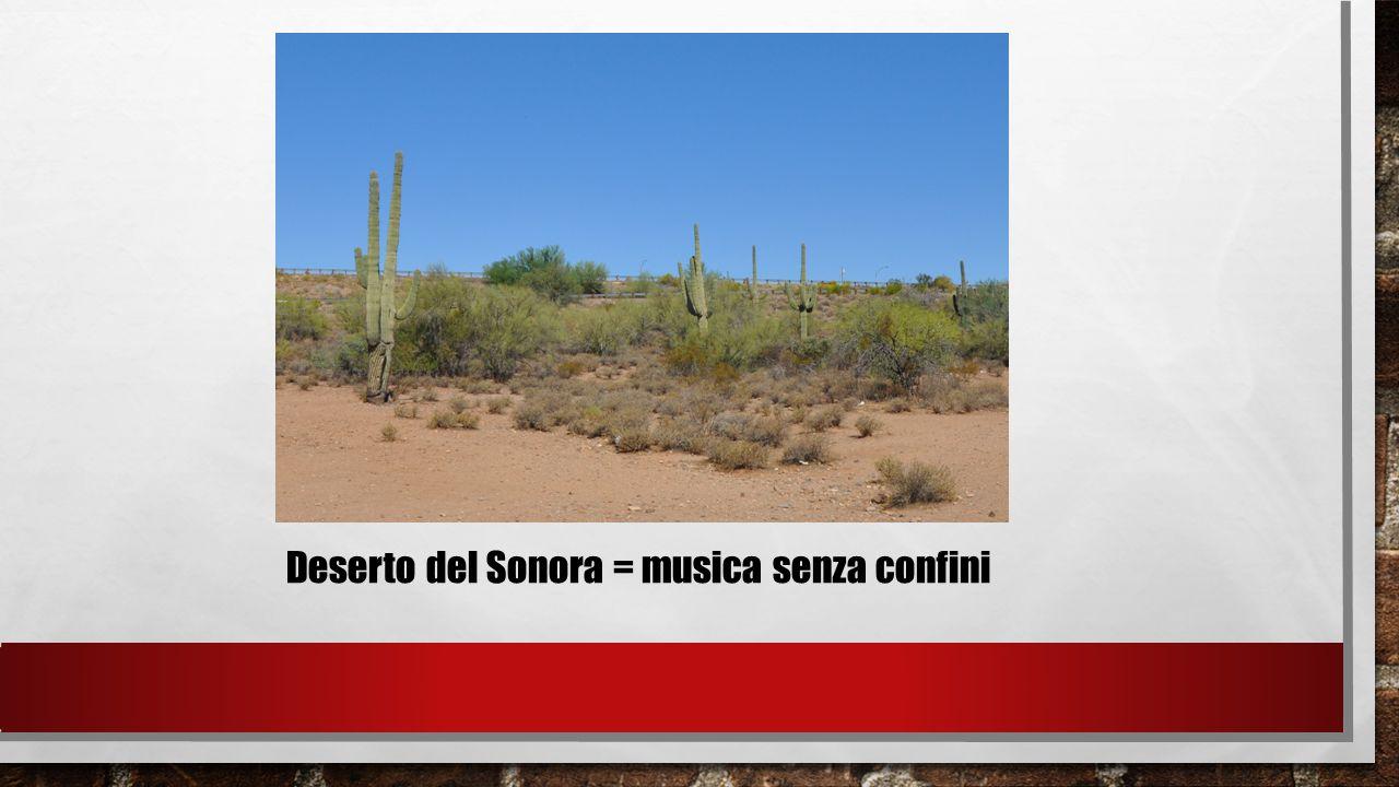 Deserto del Sonora = musica senza confini