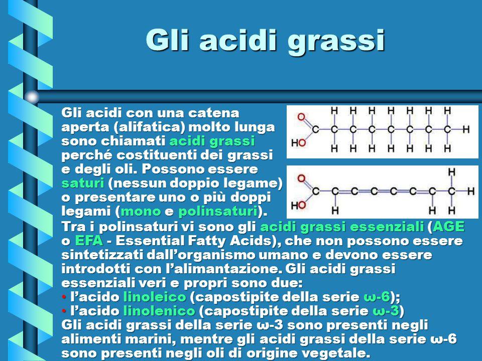 Gli acidi con una catena aperta (alifatica) molto lunga sono chiamati acidi grassi perché costituenti dei grassi e degli oli. Possono essere saturi (n
